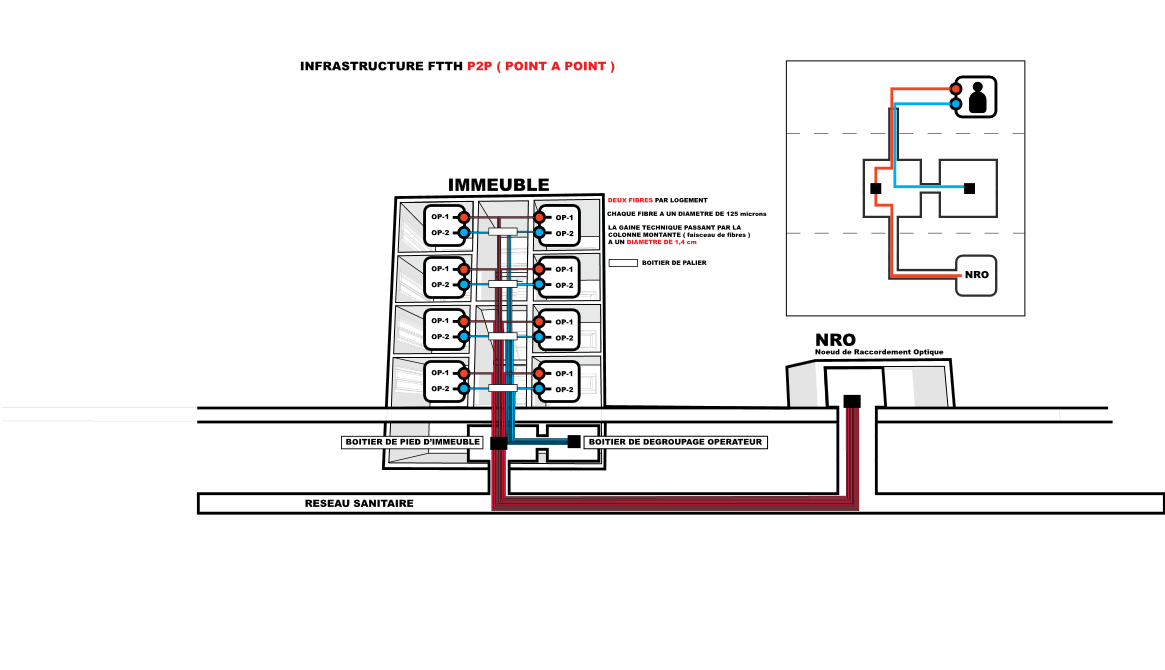 Schéma d'une architecture FTTH P2P, 8 logements, 8 brins de fibre optique